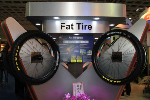 Maxxis Fatbike 29 plus tires (2)