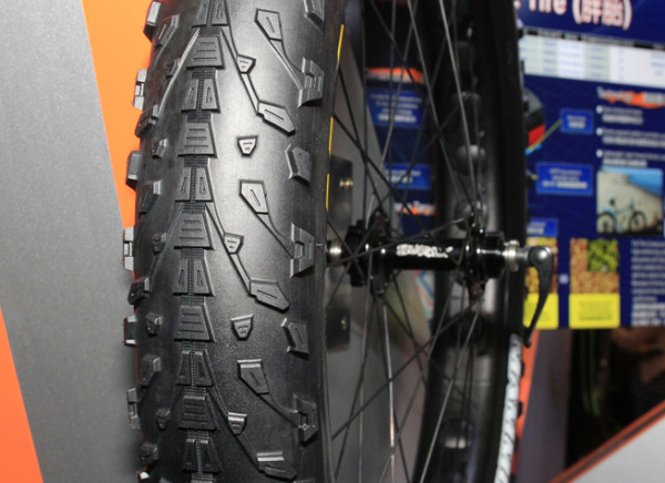Maxxis Fatbike 29 plus tires (3)