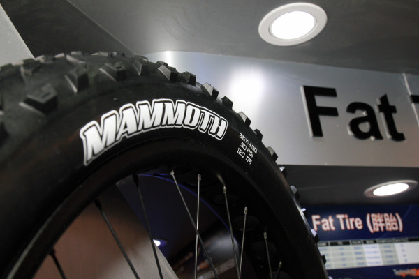 Maxxis Fatbike 29 plus tires (4)