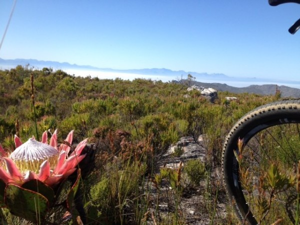 bikerumor pic of the day cape town, south africa bike ride