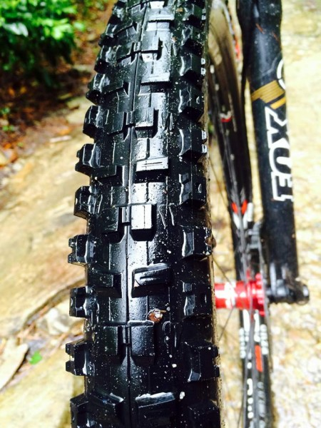 onza ibex 29er freeride mountain bike tire review