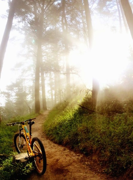 bikerumor pic of the day heaven or oakland?
