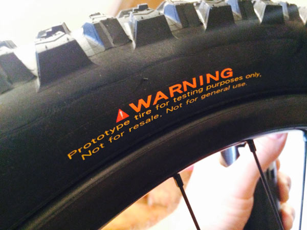 prototype maxxis downhill mountain bike tire summer 2014 sneak peek