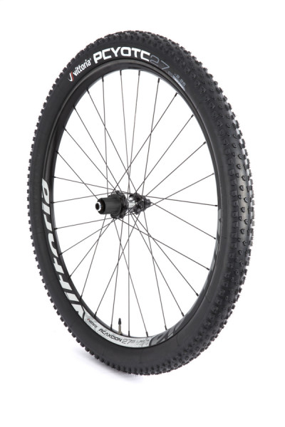 The Vittoria Reaxcion R mountain bike wheel
