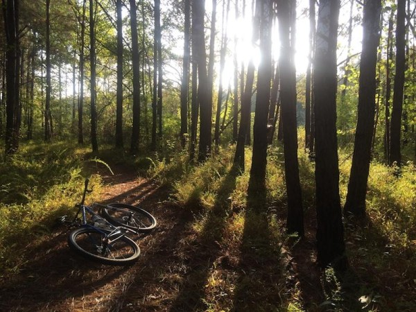 bikerumor pic of the day Noxubee Hills Trail in MS.  A hidden gem of a trail system tucked deep into the woods of central Mississippi.