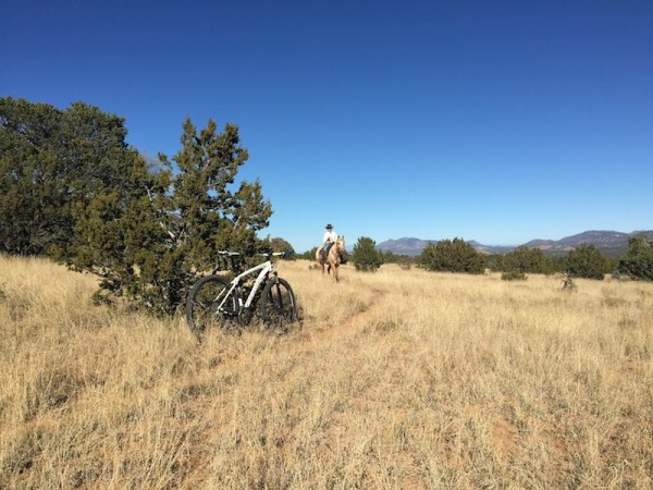 bikerumor pic of the day Late autumn day in Sandia Park, New Mexico I had stopped to let the horse pass.