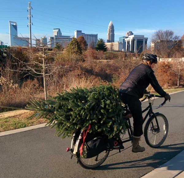 pic-of-day-xmas-tree-cargo-bike
