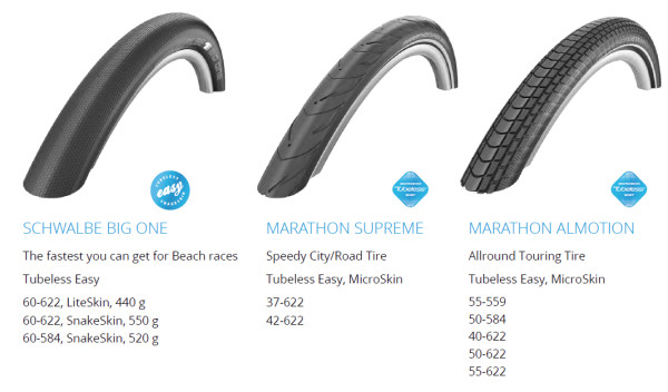 Schwalbe tubeless tires big one