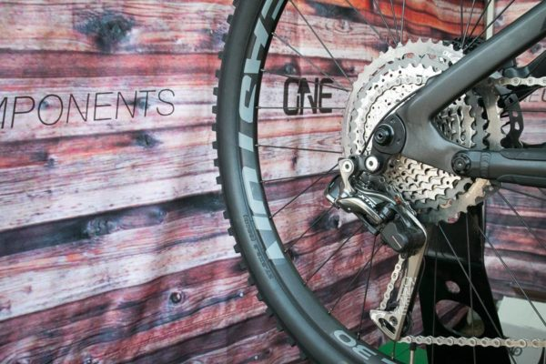 One Up Shark cage di2 shimano 10 50 derailleur cage cassette adapterIMG_3432
