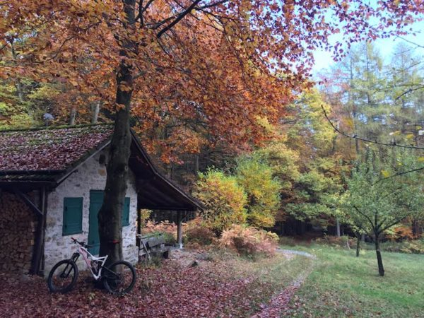 bikerumor pic of the day a hunting lodge in the autumnal Taunus mountain range near Frankfurt, Germany, mountain biking