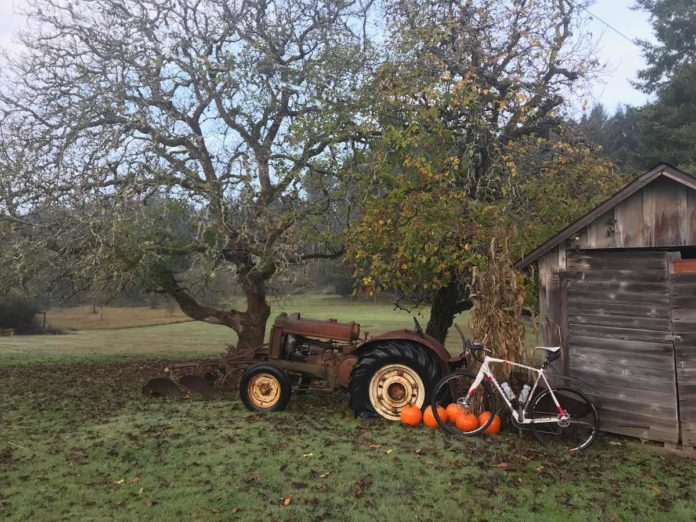 bikerumor pic of the day cycling in Longbranch, Washington state