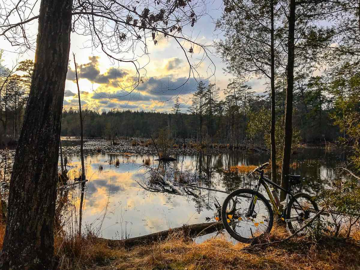 bikerumor pic of the day bike riding maple lake wildlife management area in New Jersey.