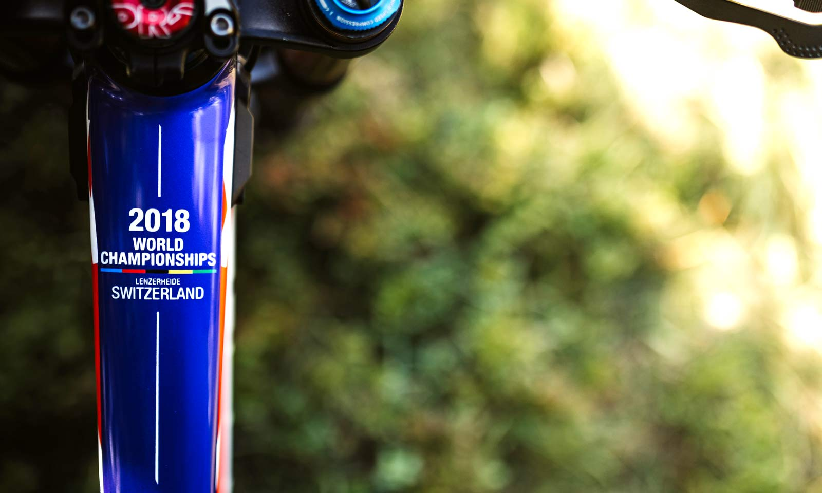 65e622c4839 DH Worlds custom Part 1, all in the details: Devinci, Intense, Saracen & S- Works