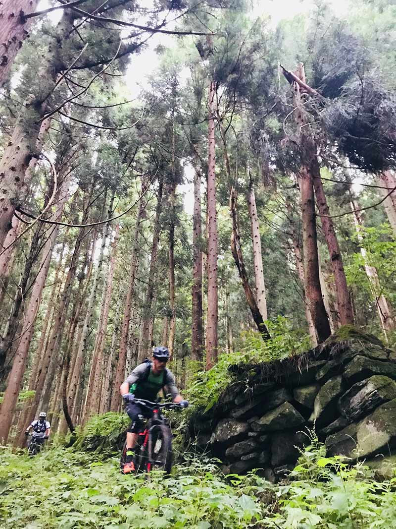 mountain biking nozawa onsen mtb trails in nagano japan with guide from compass house bike shop