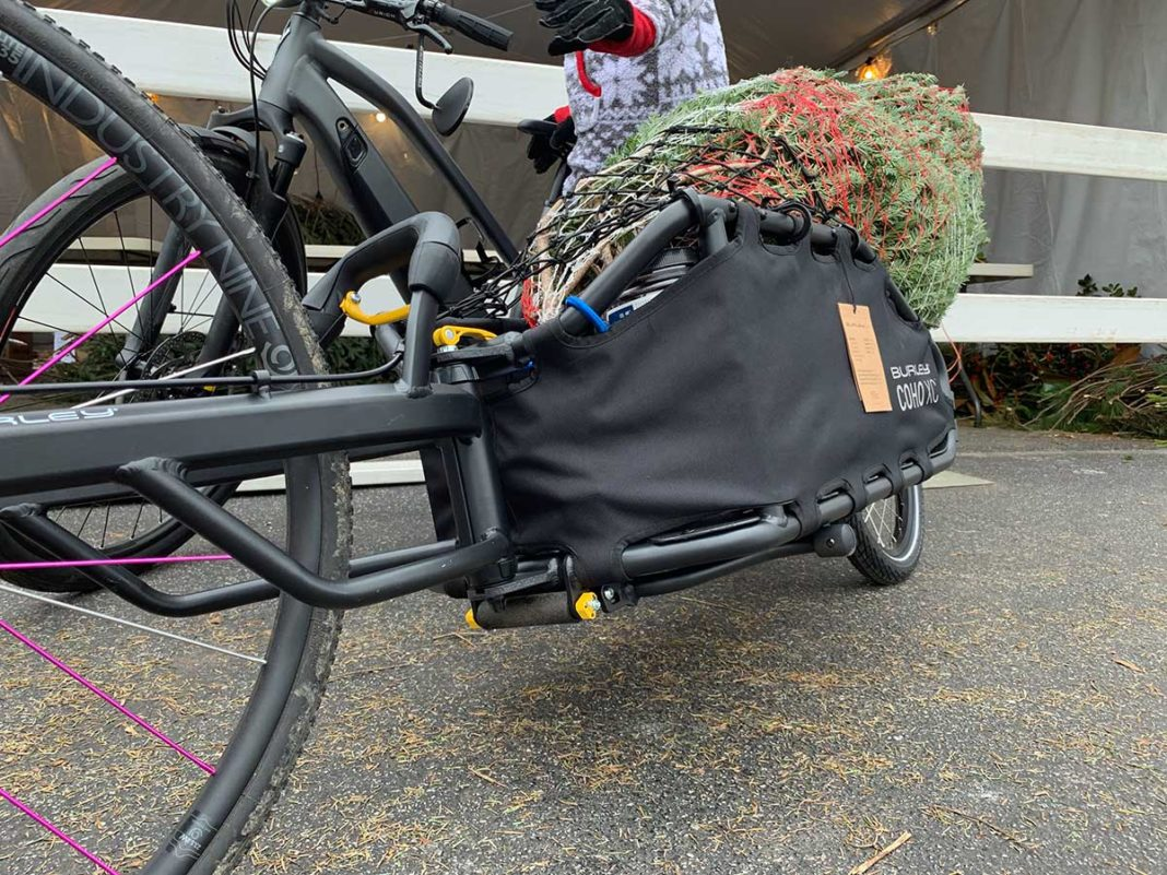 burley coho xc bike trailer review shows how to haul your christmas tree home on a bicycle