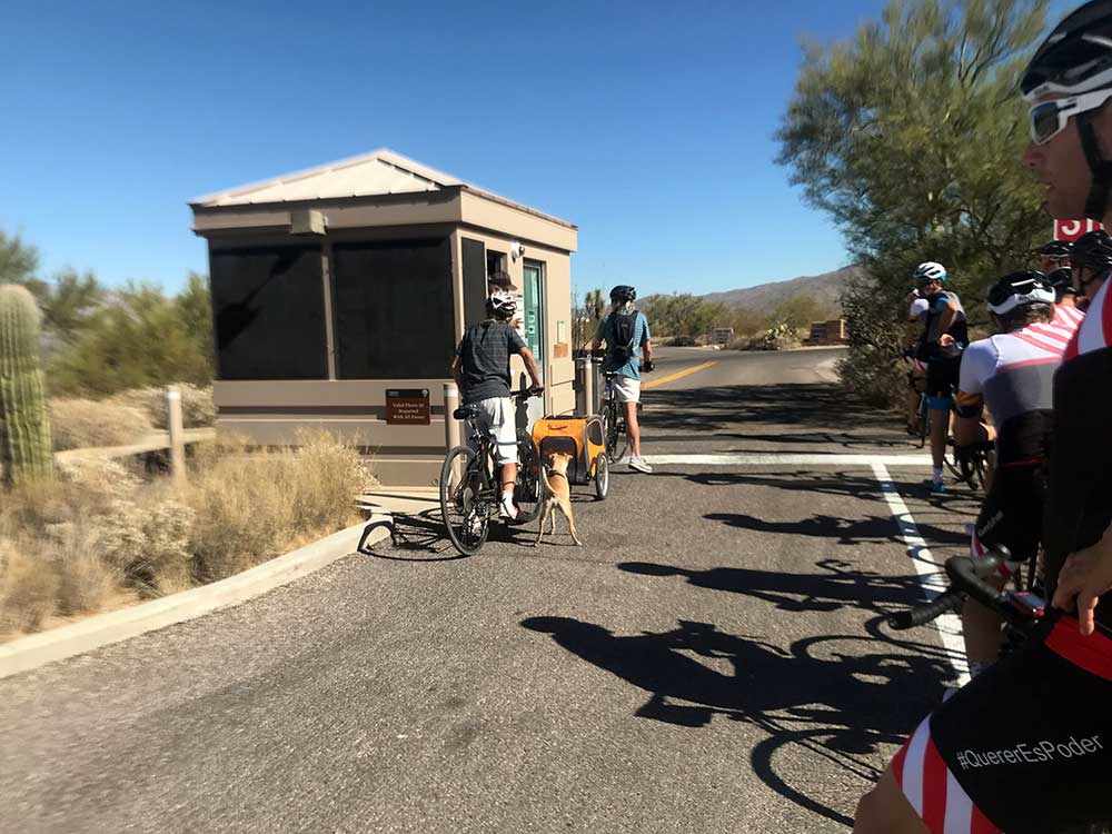 commuter cycling and bicycle tour of saguaro national park in tucson arizona is very family friendly
