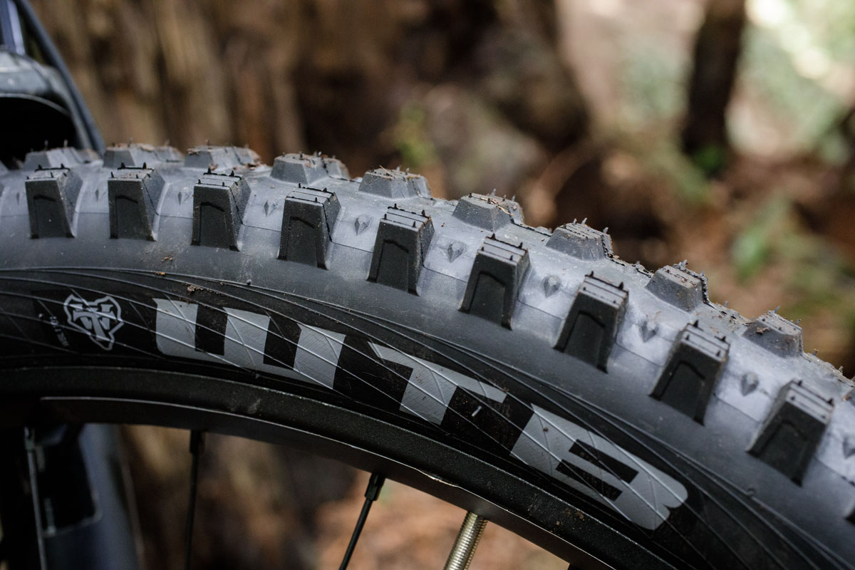 The Verdict is in: New spike tires from WTB grip in wet or loose terrain