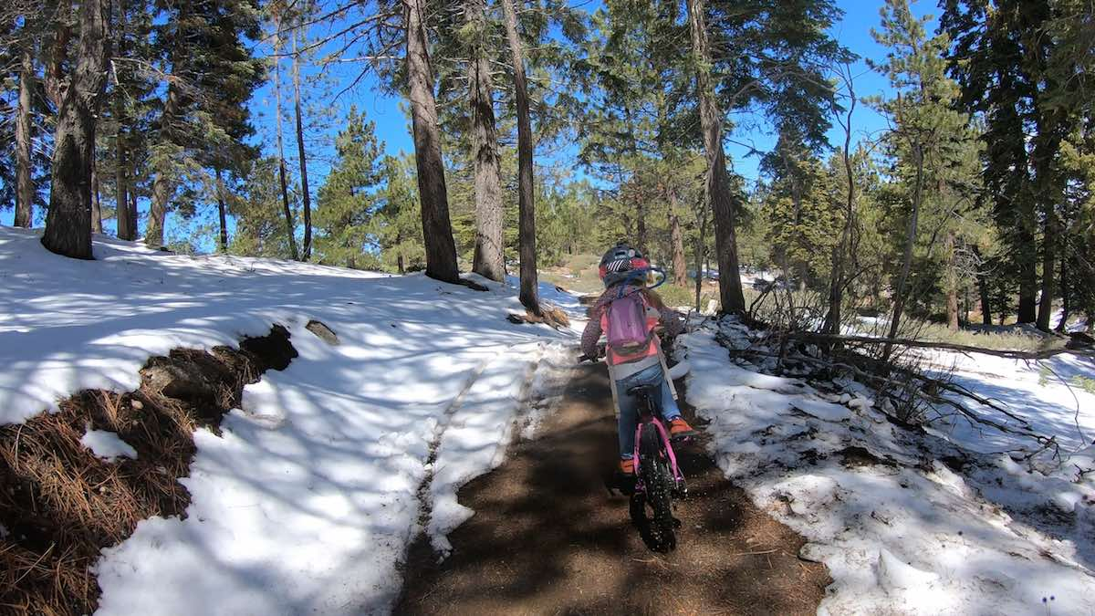 bikerumor pic of the day grom at summit bike park in southern california