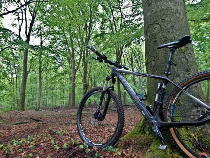 bikerumor pic of the day mountain biking in Wageningen, Netherlands