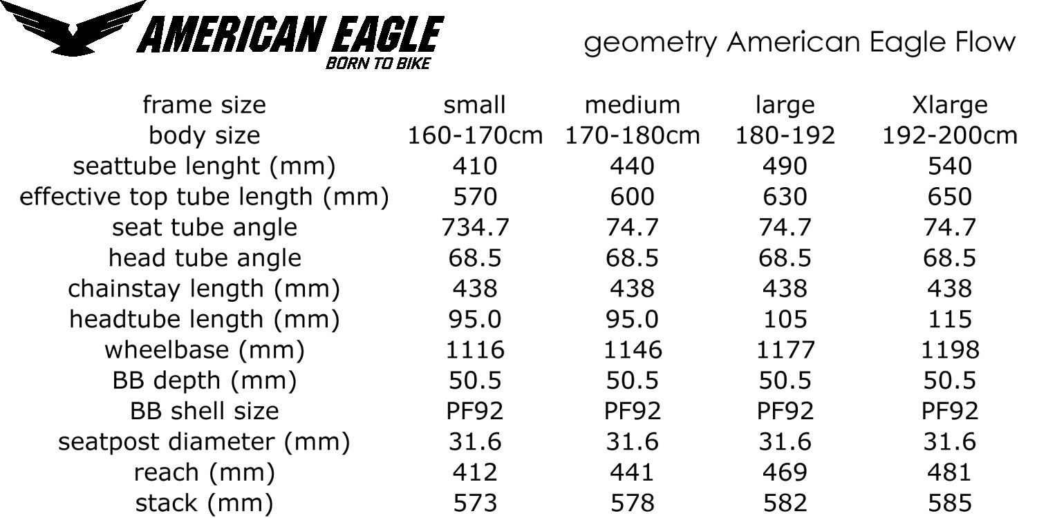 2020 American Eagle Flow XC MTB, short-travel 100mm carbon full-suspension cross-country race mountain bike geometry