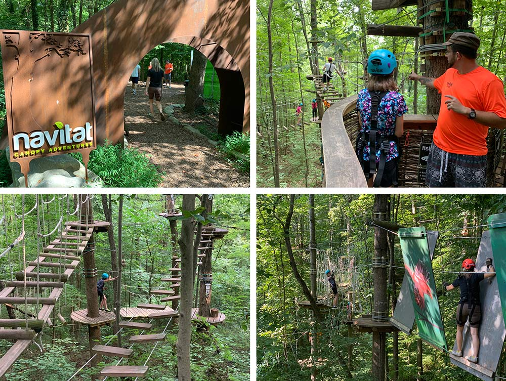 navitat high ropes course review in knoxville tennessee ijams nature center