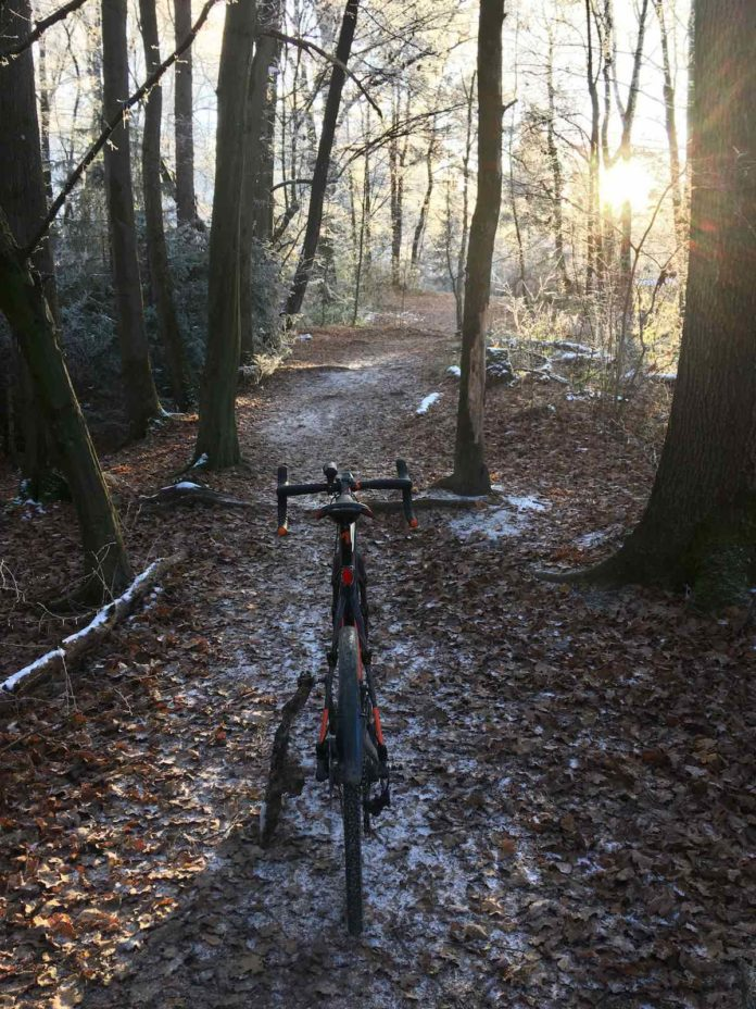 bikerumor pic of the day trail riding in munich bavaria germany in the forest with the winter sun peeking through the trees