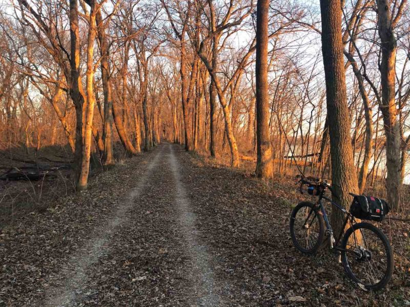 bikerumor pic of the day biking the C&O Canal towpath in brunswick maryland. bicycle leaning against tree beside a dirt path with rows of trees on either side, sun shining through the trees.