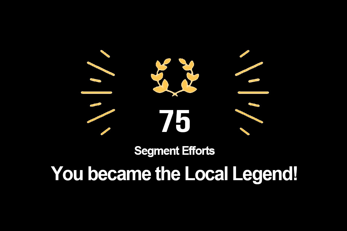 what is strava local legends ranking
