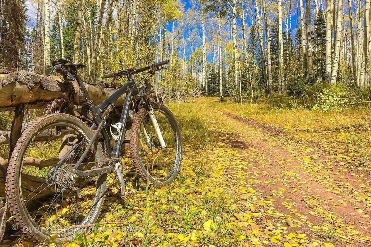 mountain bike with fall leaves and changing colors in durango colorado