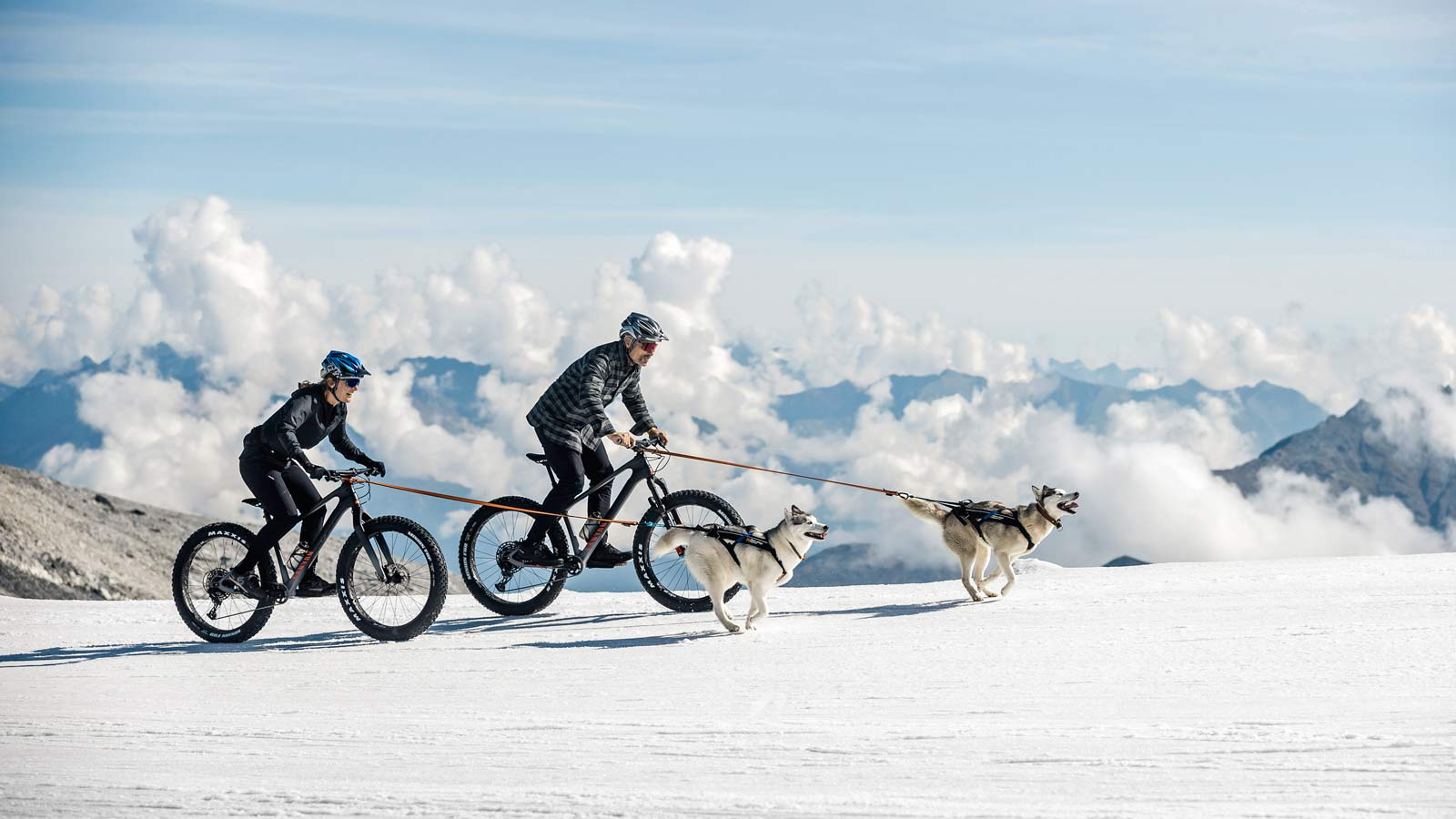 """2021 Canyon Dude carbon fat bike goes 27.5x3.8"""", sled dogs"""