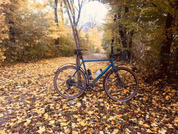 bikerumor pic of the day vienna austria, bicycle on fallen leaves of yellow and brown