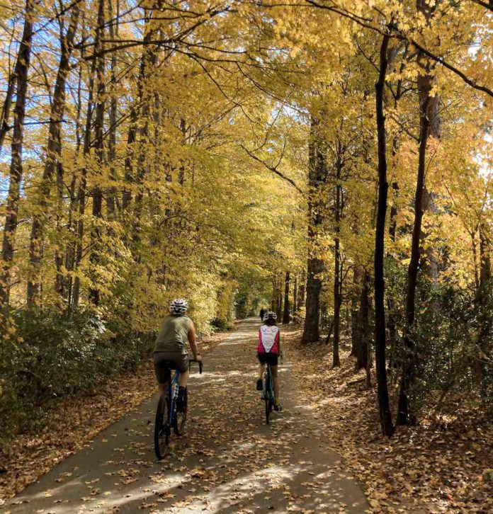 bikerumor pic of the day greensboro greenway two cyclists on a path covered in yellow fallen leaves surrounded by trees with golden yellow leaves.