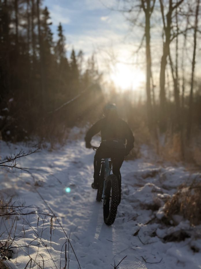 bikerumor pic of the day lois hole centennial provincial park edmonton alberta canada a rider on a fat bike rides into the sun on a snowy trail.