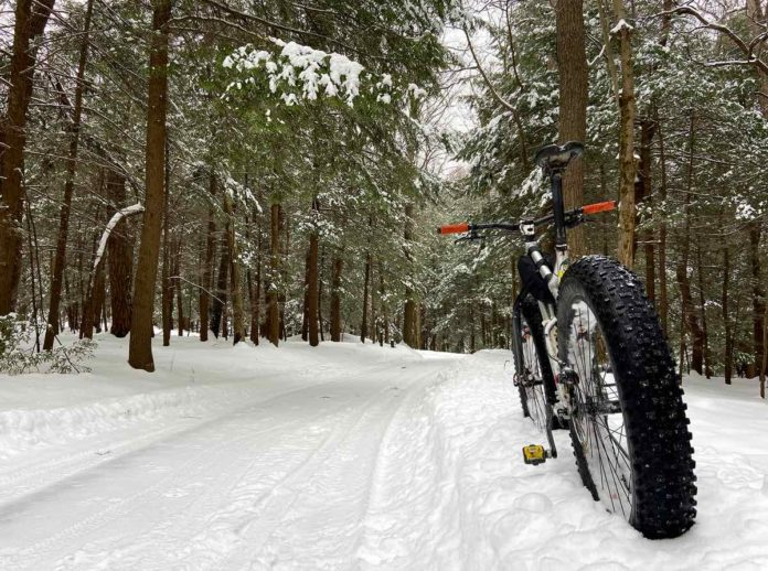 bikerumor pic of the day a fat bike is placed in the snow facing away from the camera on the side of a snowy path with pine trees surrounding in Coopers Rock State Forest west virginia